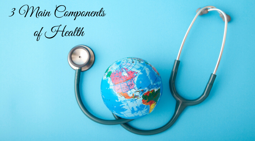 3 Main Components of Health